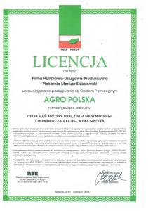Sokołowski-1